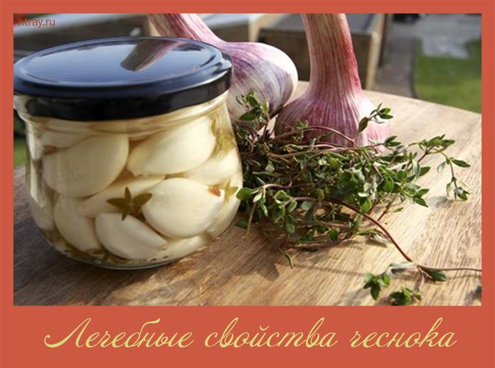 лечебные свойства чеснока и лука