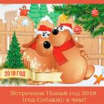 Встречаем Новый год 2018 (год Собаки): в чем?