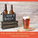 Как выбрать крафтовое пиво — советы новичку